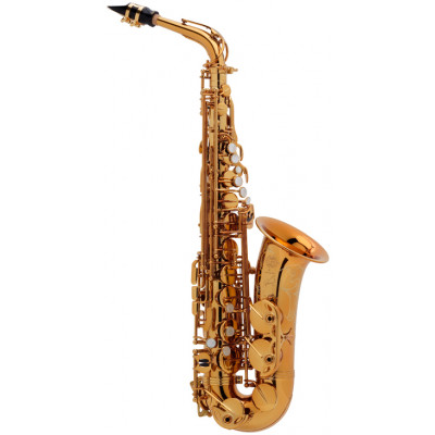 Selmer Altsax - Reference 54 in Goudlak