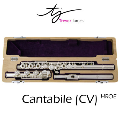 Trevor James Cantabile CV Dwarsfluit